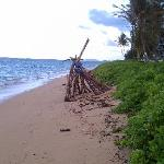 The beach at Punaluu