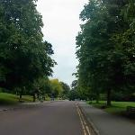 Even the road bisecting the park was nice