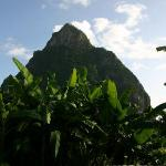 View of petit piton from Ginger Lily verandah