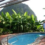 Plunge pool and view