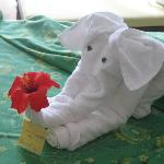 An example of daily housekeeping creations