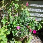 Nice garden areas.