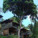 Hill-side villas