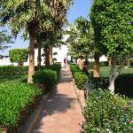 Halomy - garden area