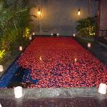 Pool decorated for Thousand Flower Dinner