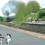 'The Fellsman' Steam train passing through Horton-in-Ribblesdale station