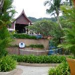 Jardin et piscines