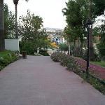 Gardening - Street