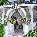 outside our wedding gazebo