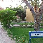 area bungalow
