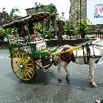 Horse drawn carriage.