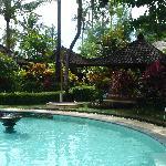 la piscine zen