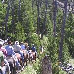 Trail Ride, just behind the ranch