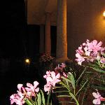 Photo of B&B Ori Villa Oriana