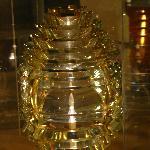 A fresnel lens