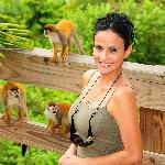 One of the many frequent visits from squirrel monkeys