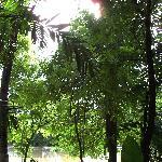 Blick von der Terrasse auf den Fluss