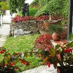 Jardin (35850308)