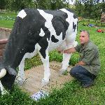 Künstliche Kuh