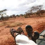 Ganz entspannt auf Safari