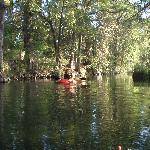 Kayaking in whats left of creek