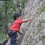 Rock climbing for children