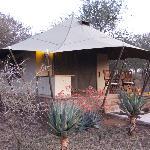 My Tent!