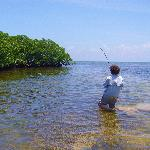 Wading flats for Bonefish