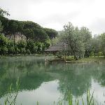 Foto del lago