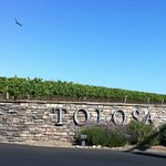 Tolosa Vineyards