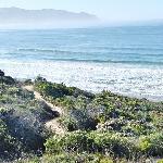 Path down to beach