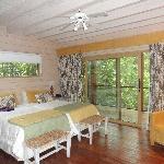 Photo of La Cantera Jungle Lodge