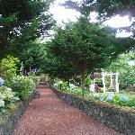 Pathways through the many levels of gardens