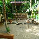 The animals' farm