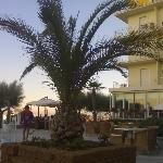Un piccolo dettaglio del giardino dell'Hotel Miramare