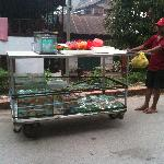Passed by this goldfish seller pushing his cart while we were walking out from the hotel, good n