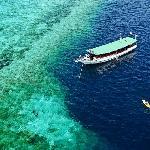 Scuba dive in paradise