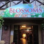 Sunday Blossoms