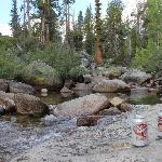 Our lunch spot at the Yosemite Creek picnic area.