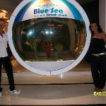 Acquario Blue Sea