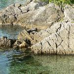 rocky beach on the way to Lovran