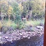 Elk grazing across the river from the cabin. He arrived 1/2 hr after we did!