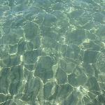 eau transparente on voit les poissons