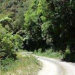 Motu Road