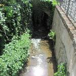 along a small stream