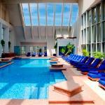 Dusit Thani Dubai's Rooftop Pool