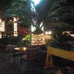 Photo of Sunny Garden