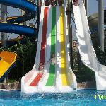 Main slides