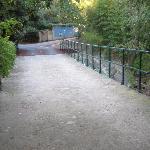 bridge on the grounds