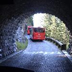 bus takes you through tunnel
